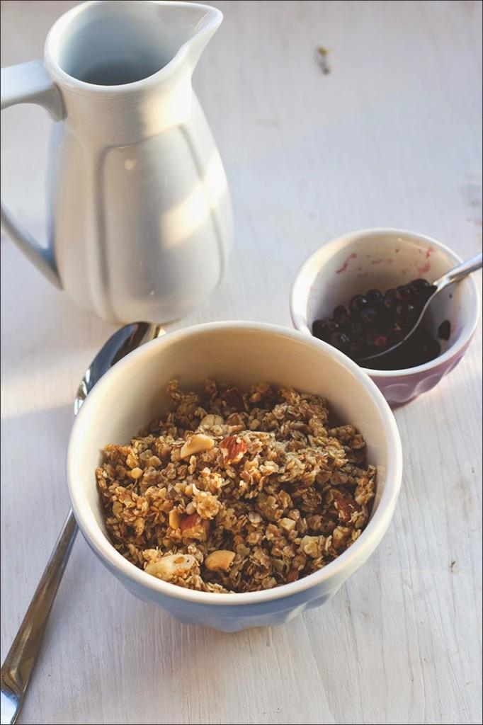 frisch gemachtes Honig-Nuss-Granola - Knuspermüsli, serviert mit Heidelbeeren und Milch
