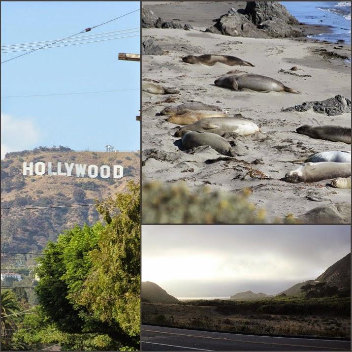 Kalifornien Collage von links im Uhrzeigersinn: Hollywood Sign in LA, Seelefanten am Pazifik, Route 1