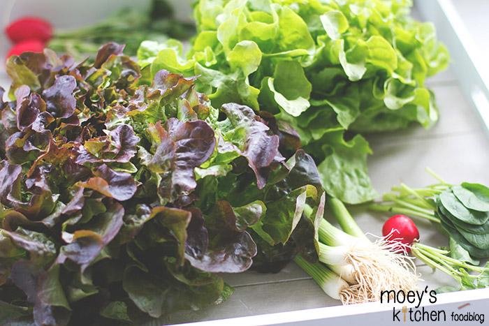 frisches Gemüse aus der Region: Salat, Spargel, Radieschen, Spinat, Frühlingszwiebeln 7xregional für REWE Regional