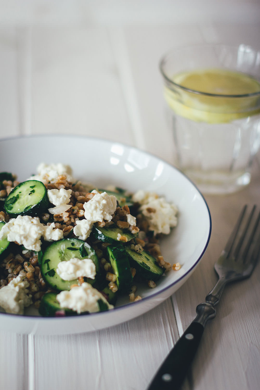 Rezept für Gurken-Dinkel-Salat | Gesunder und sättigender Gurkensalat mit vorgekochten Dinkelkörnern und Hüttenkäse | moeyskitchen.com #gurkensalat #gurken #salat #sommer #rezepte #foodblogger #dinkel #gesunderezepte