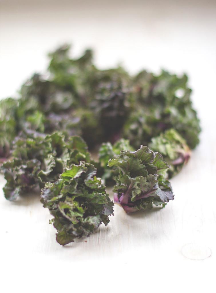 Flower Sprouts (Kohlröschen)