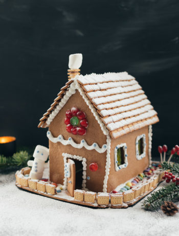 Mein Lebkuchenhaus - mit Rezept und vielen Tipps | moeyskitchen.com