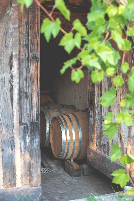 Weinkeller in der Provence | moeyskitchen.com