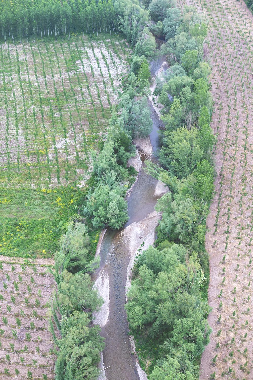 Fahrt mit dem Heißluftballon über die Weinreben im Rioja 2018