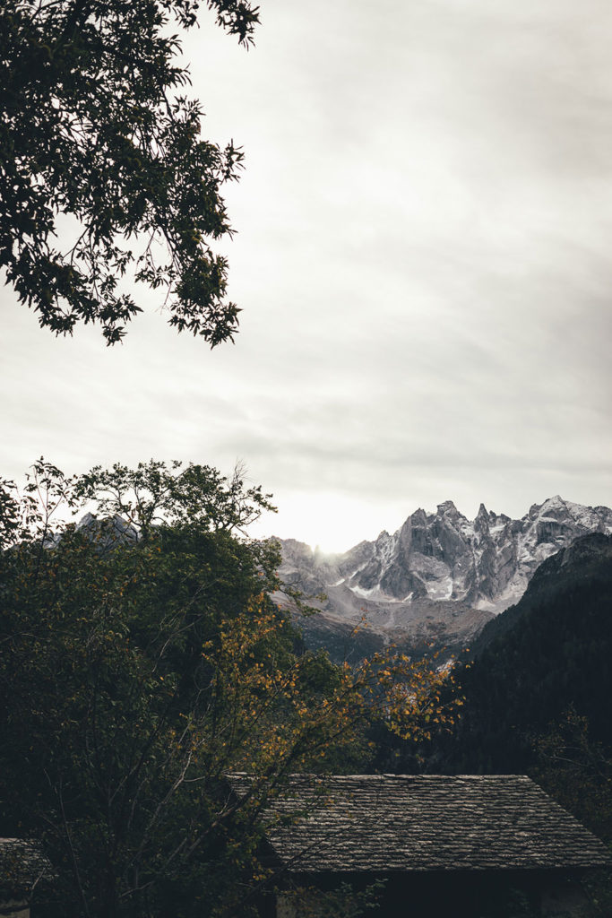 Kastanienselve in der Nähe von Castasegna im Bergell in der Schweiz (Graubünden) | moeyskitchen.com #kastanien #kastanienwald #kastanienselve #schweiz #bergell #graubünden #reise #reisebericht #blog