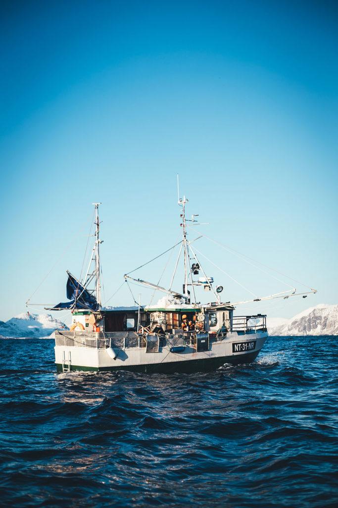 Beim Skreifischen in Lofoten (Norwegen) | moeyskitchen.com